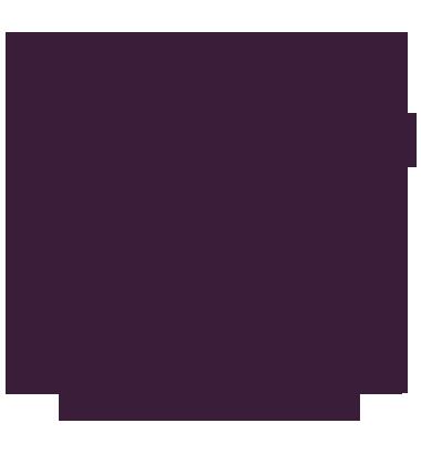 LAN, Optická kabeláž, PC a IT řešení
